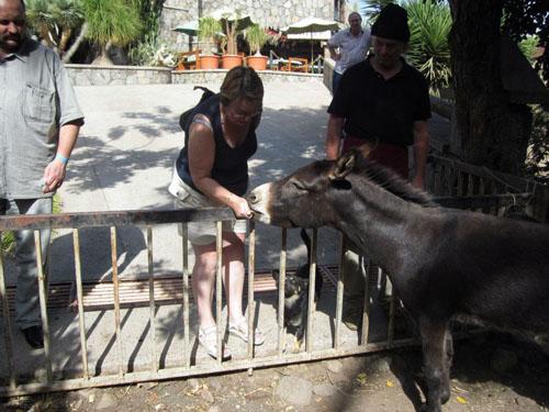 Fütterung der Tiere - Kakteenpark Cactualdea